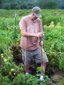 Digging Potatoes in the Community Garden