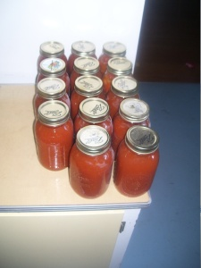 Fully processed tomato sauce